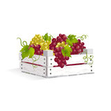 Wooden box with grapes Royalty Free Stock Photo