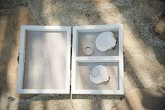 A wooden box is host to two wedding rings with a pair of seashel. Stunning wedding stock photography from Zakynthos Greece! Exquisite wedding rings Stock Photos