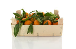 Wooden box with mandarines Stock Photos