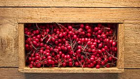 Wooden box with murrey haw berries of wild hawthorn on rough wooden background. Copy space for your text, flat lay, top view. autumn harvesting concept stock photos