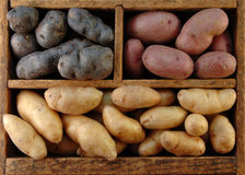 Wooden Box of Potatoes Stock Photo
