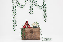 Wooden box and red shoes with vine background Stock Photos