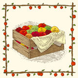 Wooden Box with Ripe Apples. In Floral Frame on a Beige Background Royalty Free Stock Photos