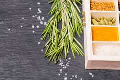 Wooden box of spices and fresh rosemary Stock Images
