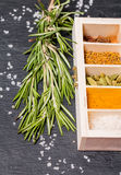 Wooden box of spices and fresh rosemary Royalty Free Stock Images