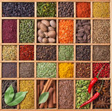 Wooden box with spices and herbs Royalty Free Stock Image