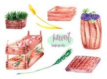 Wooden box watercolor stock illustration