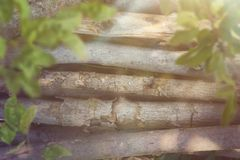 Wooden branches laying and defocused leaves with space for text. stock images