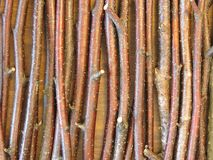 Wooden branches pattern Royalty Free Stock Photos
