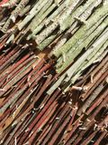 Wooden branches pattern Royalty Free Stock Image