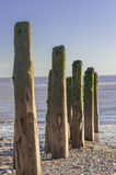 Wooden Breakwater at Beach Stock Image
