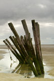 Wooden breakwater Stock Images
