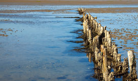 Wooden breakwater Royalty Free Stock Photography