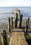 Wooden breakwater in sea. Old wooden posts of breakwater receding into sea Royalty Free Stock Photos