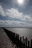 Wooden breakwater in the Wadden Sea Stock Image