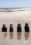 Wooden breakwaters Stock Photo