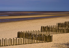 Wooden breakwaters on the beach Royalty Free Stock Photography