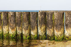 Wooden breakwaters at the edge of a beach Royalty Free Stock Photo