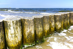 Wooden breakwaters in Kolobrzeg, Poland Stock Images