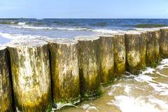 Wooden breakwaters in Kolobrzeg, Poland Stock Images