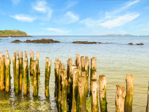 Wooden breakwaters in low tide and Fort National Stock Photo