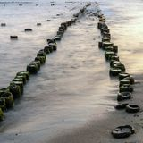 Wooden breakwaters on the sea shore.  royalty free stock photo