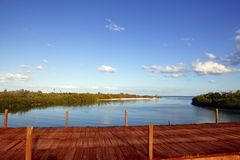 Free Wooden Bride Over Mangrove Canal In Mexico Royalty Free Stock Images - 13610229
