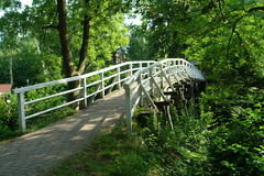 Wooden bridge. In park stock photography