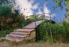 Wooden bridge. In a natural reserve in Siracusa Italy (Ciane river Royalty Free Stock Photography