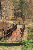 The wooden bridge. (flooring) over a streamlet in park Royalty Free Stock Image