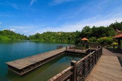Wooden bridge. Beautiful wooden bridge scenery at the park Stock Photography