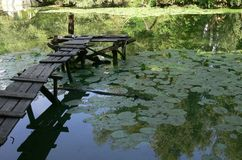 Wooden bridge. On a river surrounded by green lily leaves under the sun Royalty Free Stock Photography