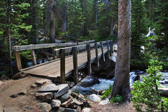 Wooden bridge. Above a stream in green forest Royalty Free Stock Image