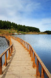 Wooden Bridge. Ending in a beautiful green meadow Royalty Free Stock Images