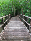 Wooden bridge Royalty Free Stock Photography
