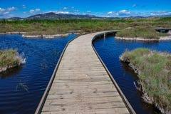 Wooden bridge across the lake Stock Photos