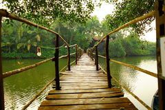 Wooden bridge across river in tropical forest. Wooden bridge across river to house in tropical forest. Goa. India Stock Photography