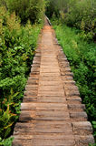 Wooden Bridge along Colorado Hiking Trail Stock Image