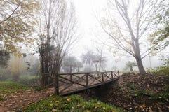 Wooden Bridge in Autumn. Wooden Bridge in foggy day Stock Photos