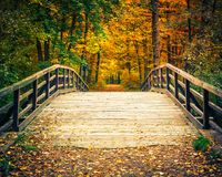 Bridge in autumn forest. Wooden bridge in the autumn forest Royalty Free Stock Image