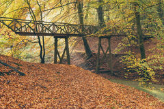 Wooden bridge in autumn forest. Wooden bridge in fall forest Royalty Free Stock Photo