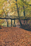 Wooden bridge in autumn forest. Wooden bridge in fall forest Royalty Free Stock Photos