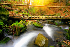 Wooden bridge in autumn forest Stock Images