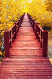 wooden bridge & autumn forest. Royalty Free Stock Photo