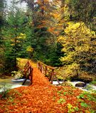 Wooden bridge in autumn forest, Rila Bulgaria Royalty Free Stock Images