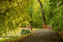 Wooden bridge in the autumn forest Royalty Free Stock Photography