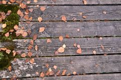 Wooden bridge with autumn leaves Royalty Free Stock Photos