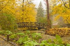 Wooden bridge in autumn park. Old Wooden bridge across small river in autumn park Stock Images
