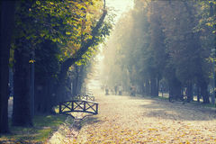 Wooden bridge  in the autumn park Royalty Free Stock Photography