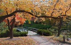 Wooden bridge in autumn park stock images